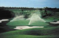 IrrigationToro3.jpg