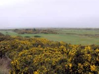 St-Andrews-veiw-2.jpg