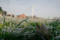 football frost3