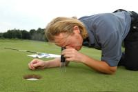 bmw golf 2