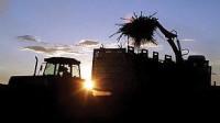 Biofuel Brazil