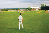 Ashville Cricket