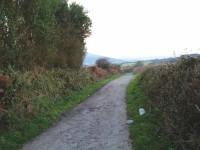 Footpath1.jpg