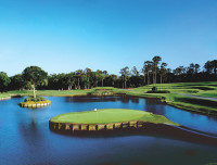 17th at sawgrass.jpg
