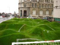 liverpool grass art