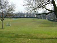 oakham-whitgift-outfield.jpg