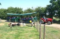 Mead Open Farm 2.jpg