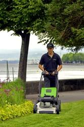 Pro 53 pedestrian mower.JPG