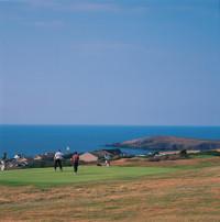 cardigan golf club 029050 full
