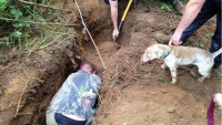 BBCHolywell Digging