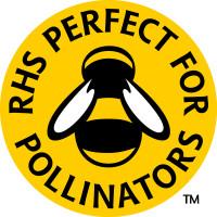 RHS Bee FC2 N