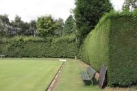 Hedges Bowls