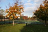 wellington cricket bowls nov08 023.jpg