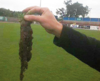 Forthbank ImprovedRooting
