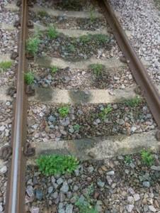 Rail Network Before 02