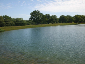 Water West Sussex GC