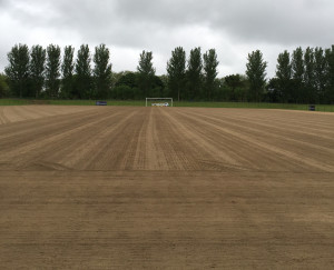 Campey Pitch Renovation Tour in Dublin (3)