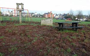 Wild Boar playground