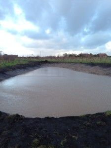 Three Owls pond completed and filled