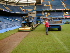 Chelsea renovations.JPG