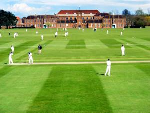 School cricket ground