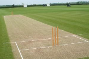cricket-pitchand-stumps.jpg