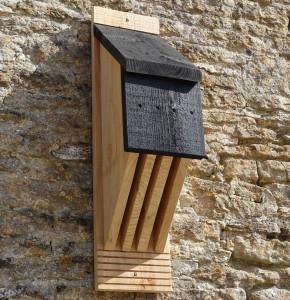 WW39 Vincent bat box highres