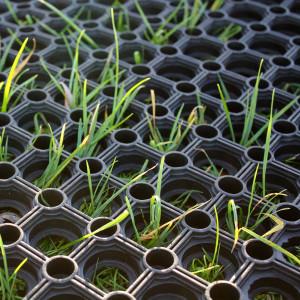 RubbaGrass Grass Protection Mats - Grass growing through