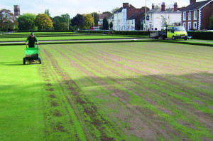 Bowls Topdressing1