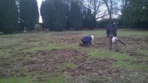 Assessing the Chafer Grub damage