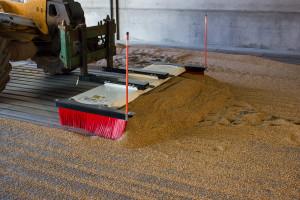 SweepEx Grain