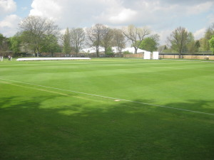 cricket 2012 001