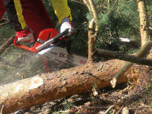 656C chainsaw (action)