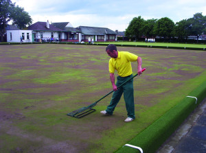 Bowls Topdressing4