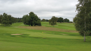 Temple GC green