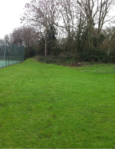 Shillingstone CC Before