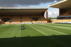 wolves new pitch 065