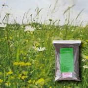 Heavy Clay Soils - 100% Wildflower Seeds