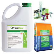Primo Maxx Ultimate Package 3