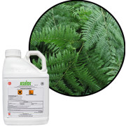 Professional Selective Weed Killers For Bracken