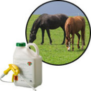 Professional Weed Killers for Paddocks