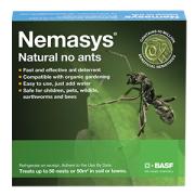 no ants Nemasys