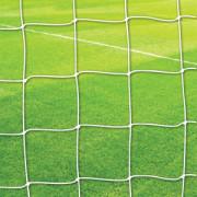 Goal Nets Thin