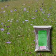 Chalk & Limestone Soils - 100% Wildflower Seeds