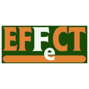 Effect Liquid Iron 10L