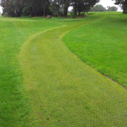 Rite Pave - Golf Course Buggy Path