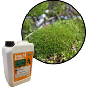 Professional Selective Weed Killers For Moss