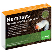 Nemasys Chafer Grub Killer (500 sqm)