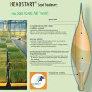 headstart seed treatment